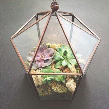 Geometrik Terrarium Eğitimi